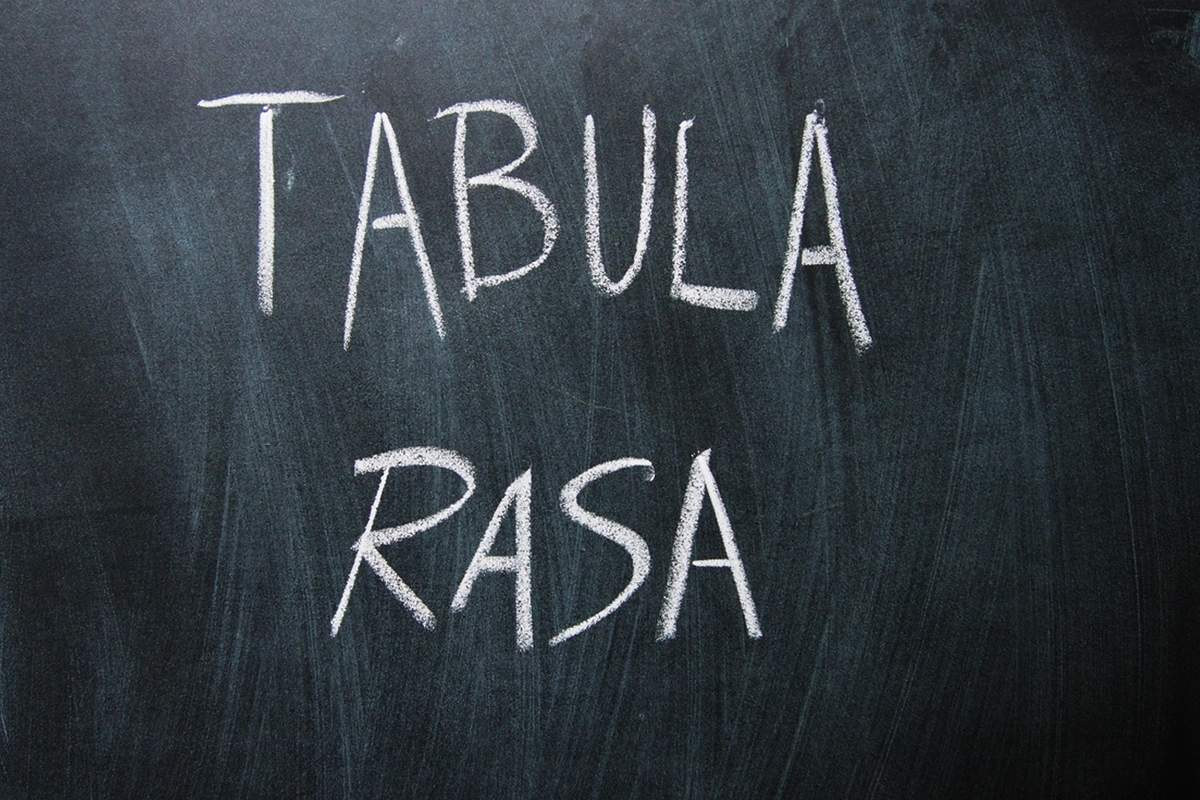 Tabula Rasa program image