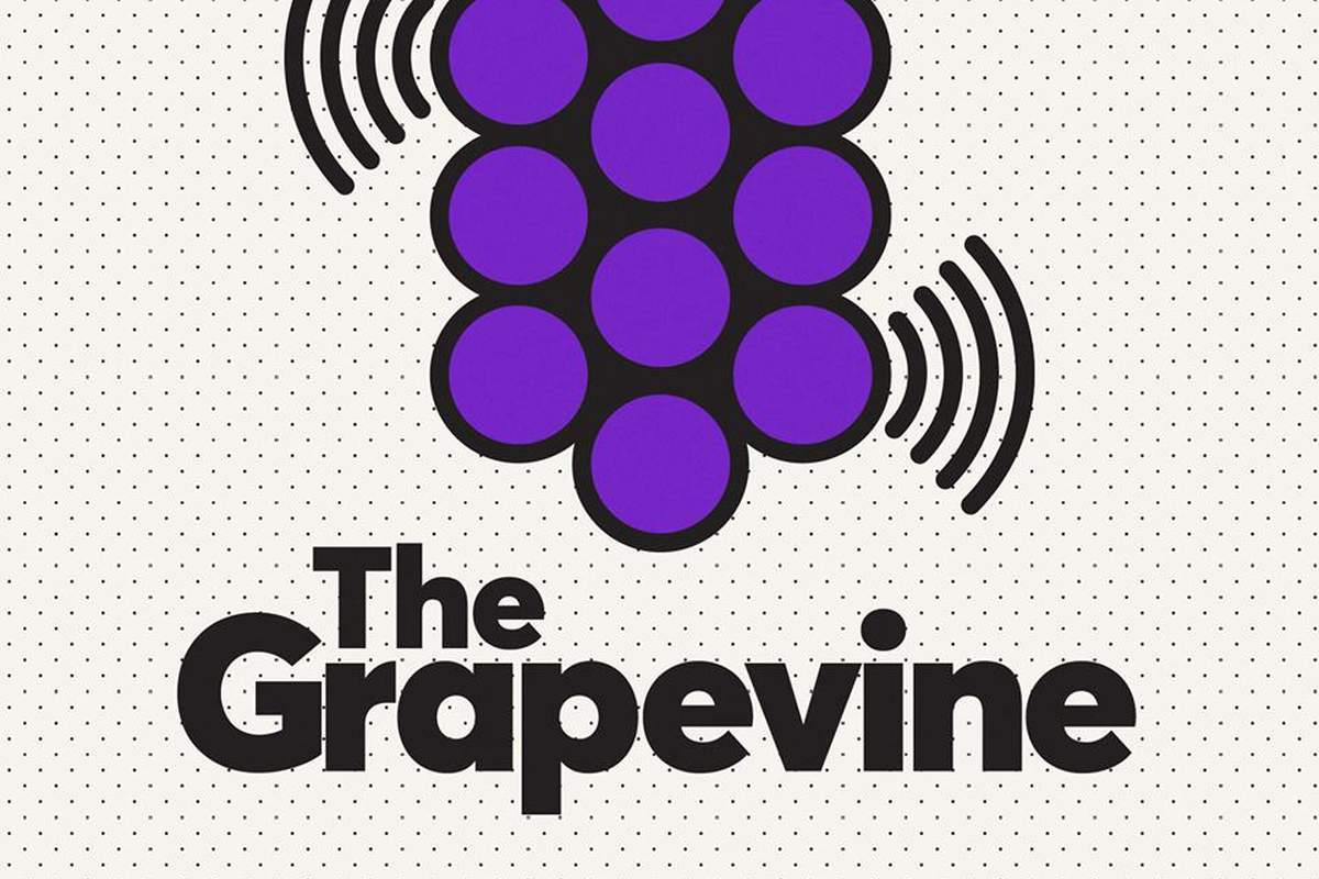 Grapevine feature image updated